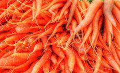 Los alimentos orgánicos no son más saludables que los convencionales