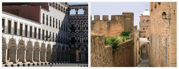 Oficinas de HIGIA de control de plagas en Cáceres y Badajoz