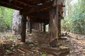 Daños ocasionados por plagas de carcomas y termitas en la madera