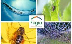 La franquicia HIGIA de control de plagas y desinfección es una salida laboral para los emprendedores