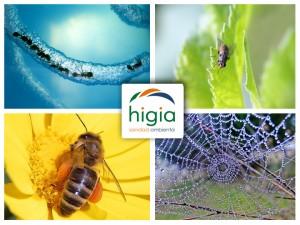 servicios de control de plagas de HIGIA