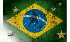 El dengue será un espectador más en el mundial de Brasil