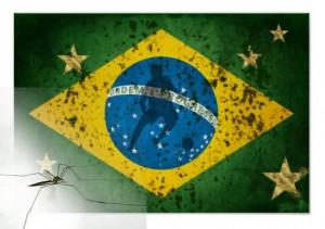 El dengue durante el mundial de Brasil