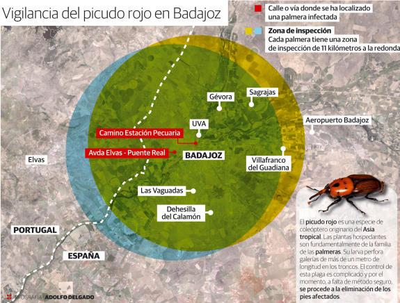 Zonas donde actúa el control de plagas contra picudos en Badajoz