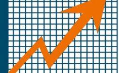 Estudio del mercado de empresas de control de plagas