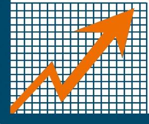 conclusiones estudio de mercado de control plagas