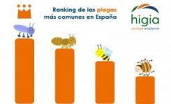 Ranking de las plagas más comunes en España
