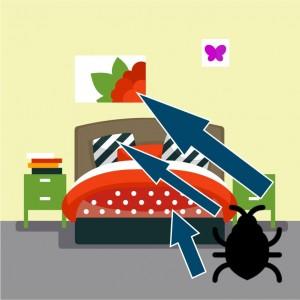 chinches de cama son atraídas por el color rojo y negro