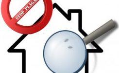 ¿Tengo plagas en casa?: Signos para identificar su presencia