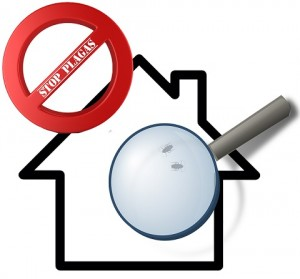 STOP plagas en casa