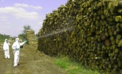 Las Consultas por Intoxicación en España se deben a Biocidas