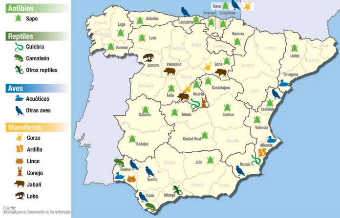 Mapa de España de los puntos negros de atropello a animales
