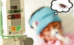 Los niños con alergia a cucarachas y roedores sufren de asma