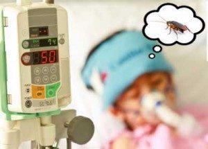Las cucarachas causan asma infantil