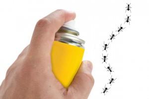 ¿es eficaz el spray contra hormigas?