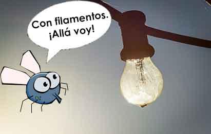 mosquitos no van a las bombillas leds