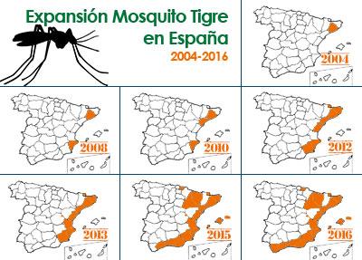 Expansión del mosquito tigre desde que llega a España