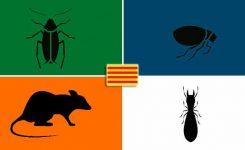 ¿Cuáles son las plagas más numerosas en Cataluña?